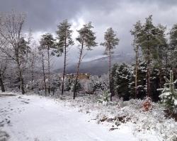 Nevada enero_3